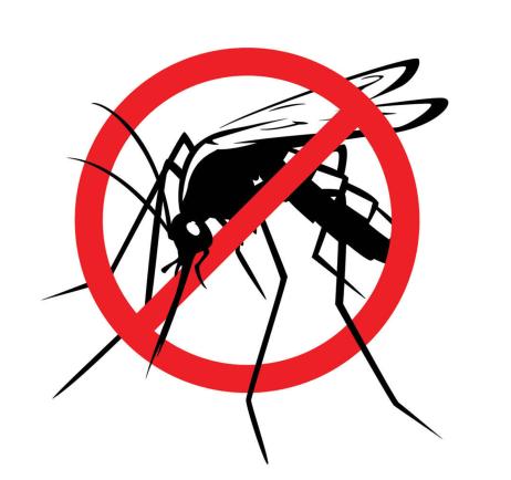 Regole d'oro per la lotta alle zanzare